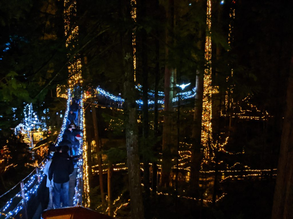 Canyon LIghts Treetop Adventure