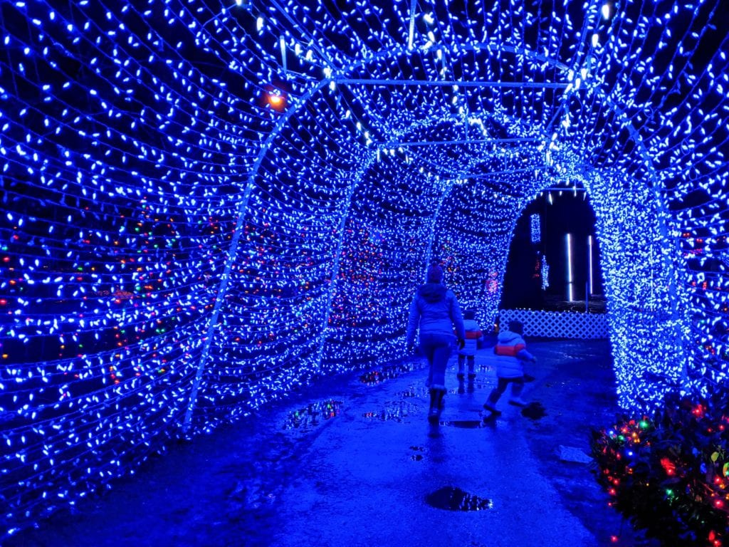 LIght Tunnel at Stanley Park Bright Nights