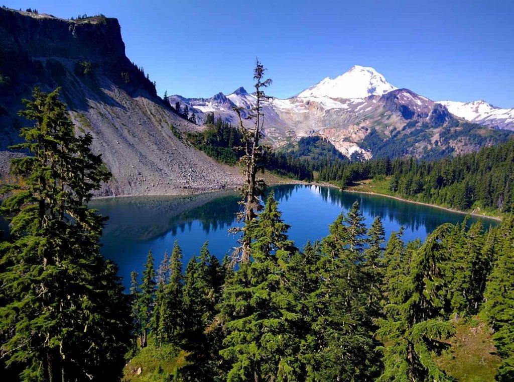 chain lakes loop- mount baker wilderness